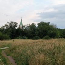 Vienne, la vie urbaine