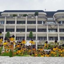 L'hôtel de ville de Linz